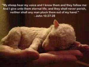 Jesus and a baby sheep